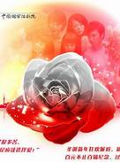 Chinese Drama - Red Rose and White Rose